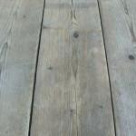 oudsteigerhout(2)